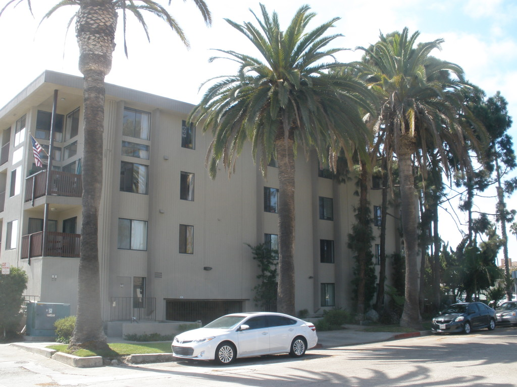 Site of Rockwood Apartments, behind the Phoenix canariensis palms on Bayard