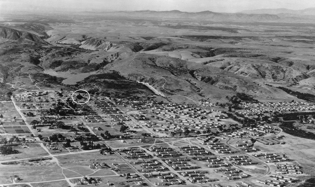 1946 aerial view of Bayview Terrace housing project showing Moreton Bay Fig (San Diego History Center #10356-2)