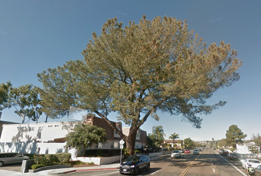Screen grab of Google Street View, Ingraham Street south of Fortuna Drive, before January 30, 2016.